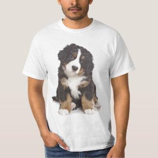 サンベルナール峠の子犬 Tシャツ