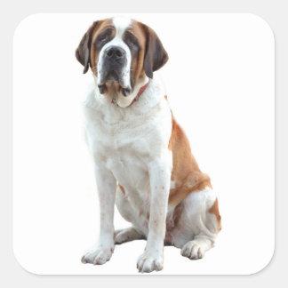 サンベルナール峠の小犬のステッカー/ラベル スクエアシール