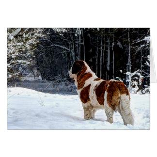 サンベルナール峠の雪の写真クリスマスの挨拶 カード