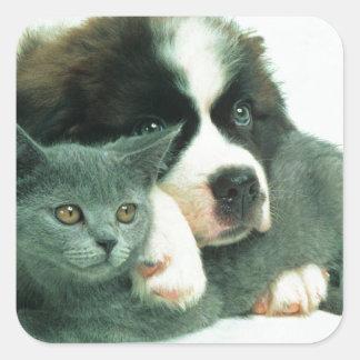 サンベルナール峠子犬および猫 スクエアシール