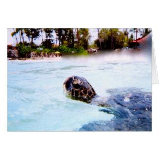 サーファーのウミガメ カード