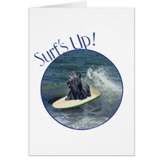 サーフィンのSkyeテリア カード