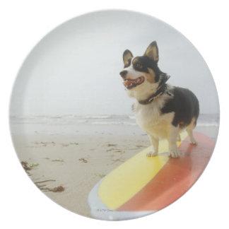 サーフボードの犬 プレート