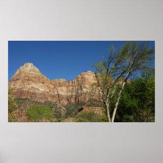 ザイオン国立公園の写真撮影の赤い石 ポスター