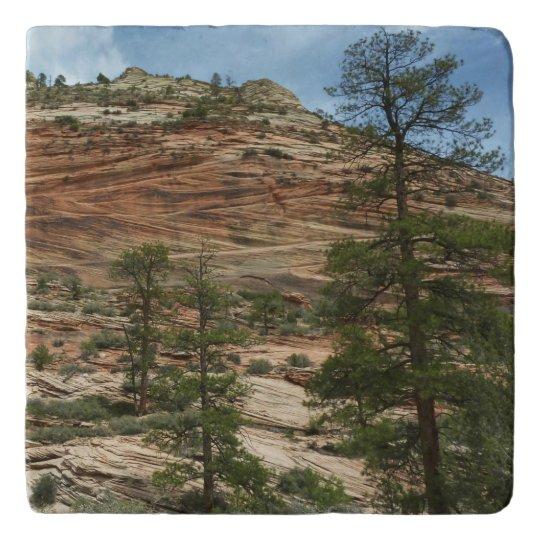 ザイオン国立公園の擦り切れたな石の壁 トリベット