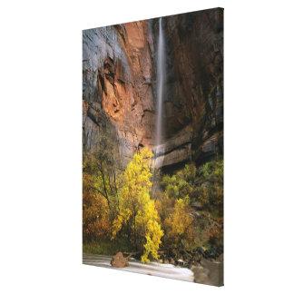 ザイオン国立公園、ユタ。 米国. はかない キャンバスプリント