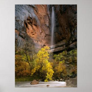 ザイオン国立公園、ユタ。 米国. はかない ポスター
