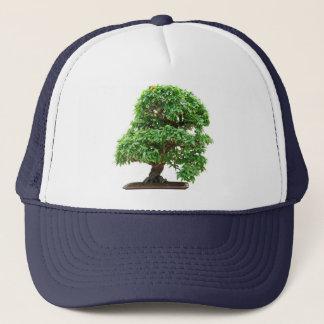 ザクロの盆栽の木 キャップ