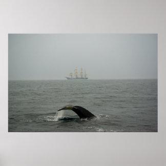 ザトウクジラおよび高い船2のプリント ポスター