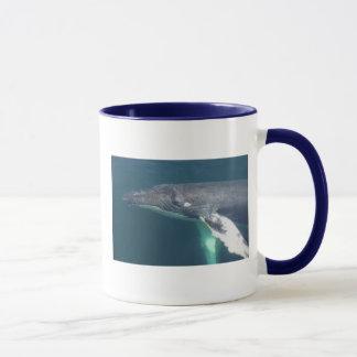 ザトウクジラのマグ マグカップ