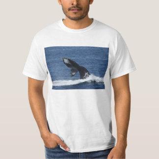 ザトウクジラの尾肝蛭のTシャツ Tシャツ