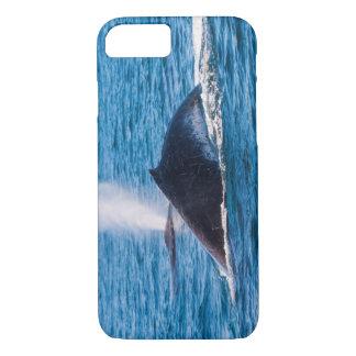ザトウクジラのiPhone 7の場合 iPhone 8/7ケース
