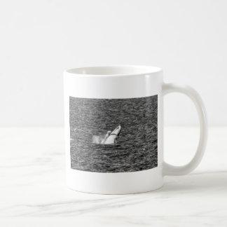 ザトウクジラクイーンズランドオーストラリア コーヒーマグカップ