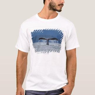 ザトウクジラ2 Tシャツ