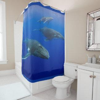 ザトウクジラ シャワーカーテン