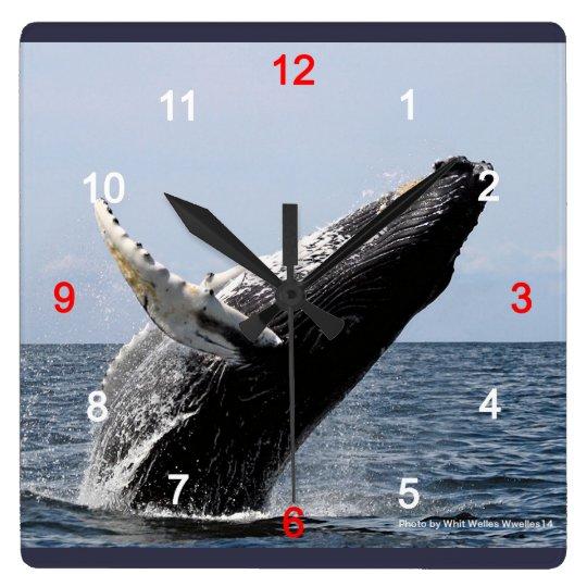 ザトウクジラ スクエア壁時計