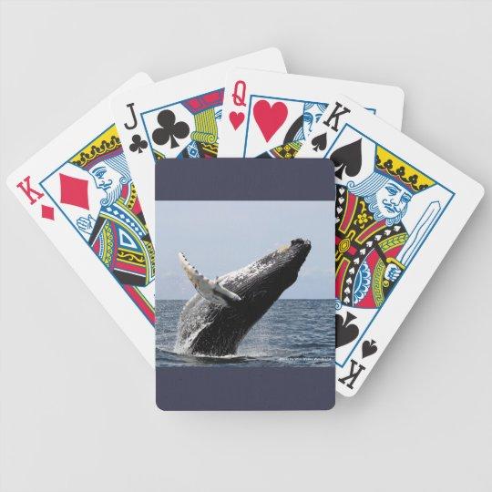 ザトウクジラ バイスクルトランプ