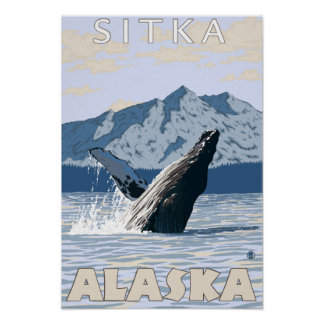 ザトウクジラ- Sitka、アラスカ ポスター