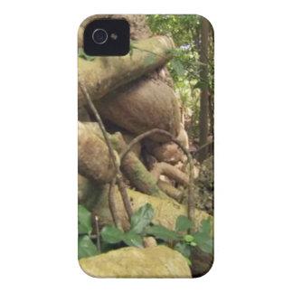 ザンジバルの島からの巨大な根の木 Case-Mate iPhone 4 ケース