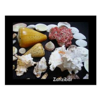 ザンジバルの貝 ポストカード