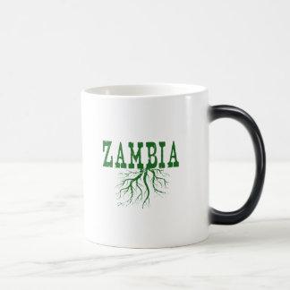 ザンビアの根 マジックマグカップ