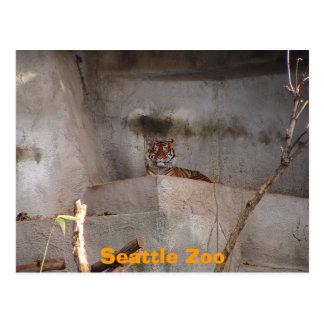 シアトルの動物園 ポストカード