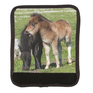 シェトランド諸島の2頭の子馬の荷物の覆い ラゲッジ ハンドルラップ