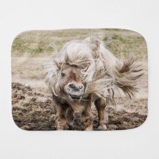 シェトランド諸島子馬の種馬のバープクロス バープクロス