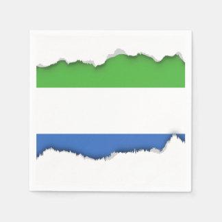 シエラレオネの旗 スタンダードカクテルナプキン