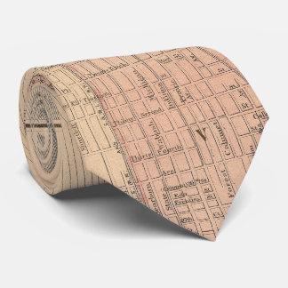 シカゴイリノイ(1876年)のヴィンテージの地図 ネックウェアー