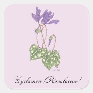 シクラメンの植物のシール スクエアシール