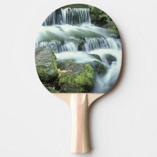 シダの春、ヨセミテ国立公園 卓球ラケット