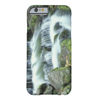 シダの春、ヨセミテ国立公園 BARELY THERE iPhone 6 ケース