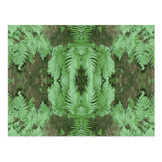 シダパターングラフィック。 緑 ポストカード