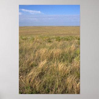 シドニー、ネブラスカの東の牧草地の草原 ポスター