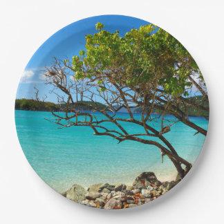 シナモン湾の聖ヨハネUSVIの熱帯紙皿 ペーパープレート