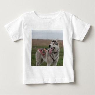 シベリアンハスキーのそり犬 ベビーTシャツ