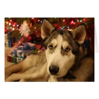 シベリアンハスキーのクリスマスの挨拶状 カード