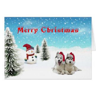 シベリアンハスキーのクリスマスカード カード