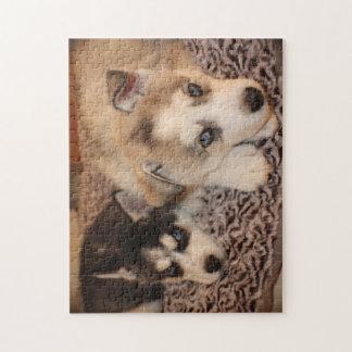 シベリアンハスキーの子犬のパズル ジグソーパズル