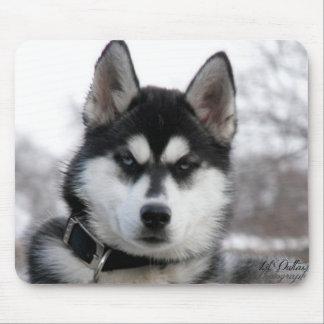 シベリアンハスキーの子犬のマウスパッド マウスパッド