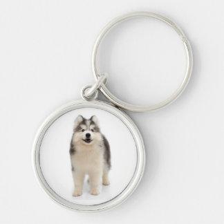 シベリアンハスキーの子犬の灰色、黒い及びクリーム色犬 キーホルダー