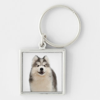 シベリアンハスキーの小犬のポートレートKeychain キーホルダー