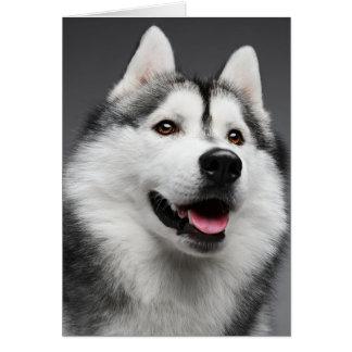 シベリアンハスキーの小犬-こんにちは、愛は、恋しく思います、 カード