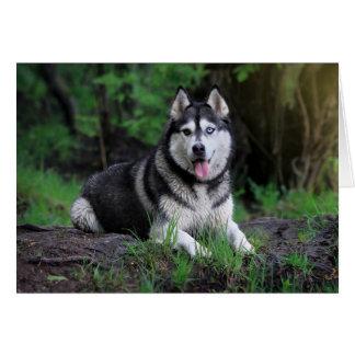 シベリアンハスキーの小犬-こんにちは、愛、ありがとう、 カード