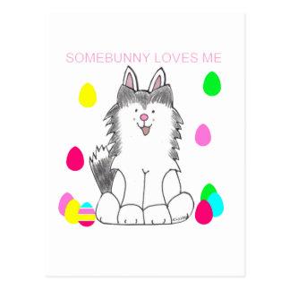 シベリアンハスキーSomebunnyは私を愛します ポストカード