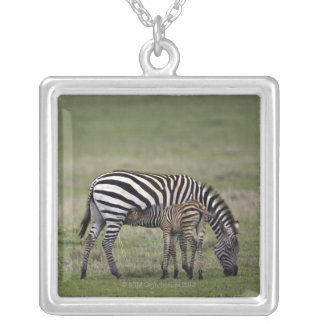 シマウマおよび看護の子馬、タンザニア シルバープレートネックレス