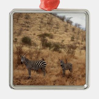 シマウマのサファリのかわいいアフリカの上品縞で飾ります メタルオーナメント