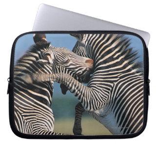 シマウマの戦い(Equusのburchelli) ラップトップスリーブ
