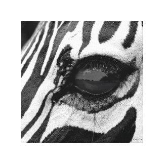 シマウマの目 キャンバスプリント